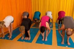 2016 09 17 _571C1833 Yoga